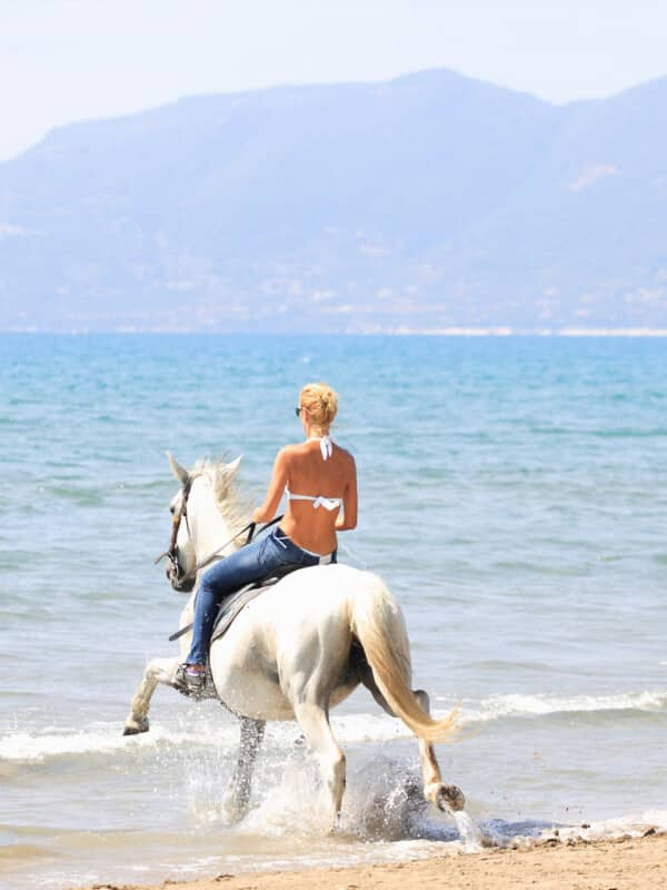 bigstock-Young-female-riding-her-horse--22427057 (1)